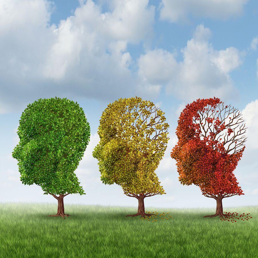 Elder Care in Queen Creek AZ: Best Life With Dementia